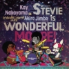 STEVIE IS WONDERFUL,MORE!/NTELLIGENT JAZZ.JPG