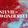 STEVIE IS WONDERFUL/NTELLIGENT JAZZ.JPG