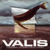 UNDER CONSTRUCTION/VALIS.JPG